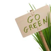 Green Process Management