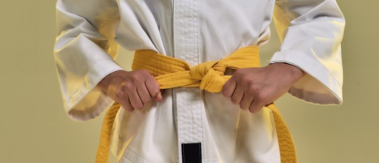 Six Sigma, Lean Six Sigma, Consulting, Practitioner, Professional, Yellow Belt, SSYB